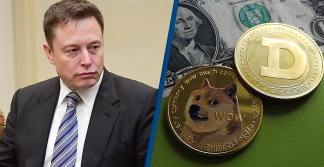 Elon Musk Tweet Has People Thinking Tesla Is About To Start Accepting Dogecoin